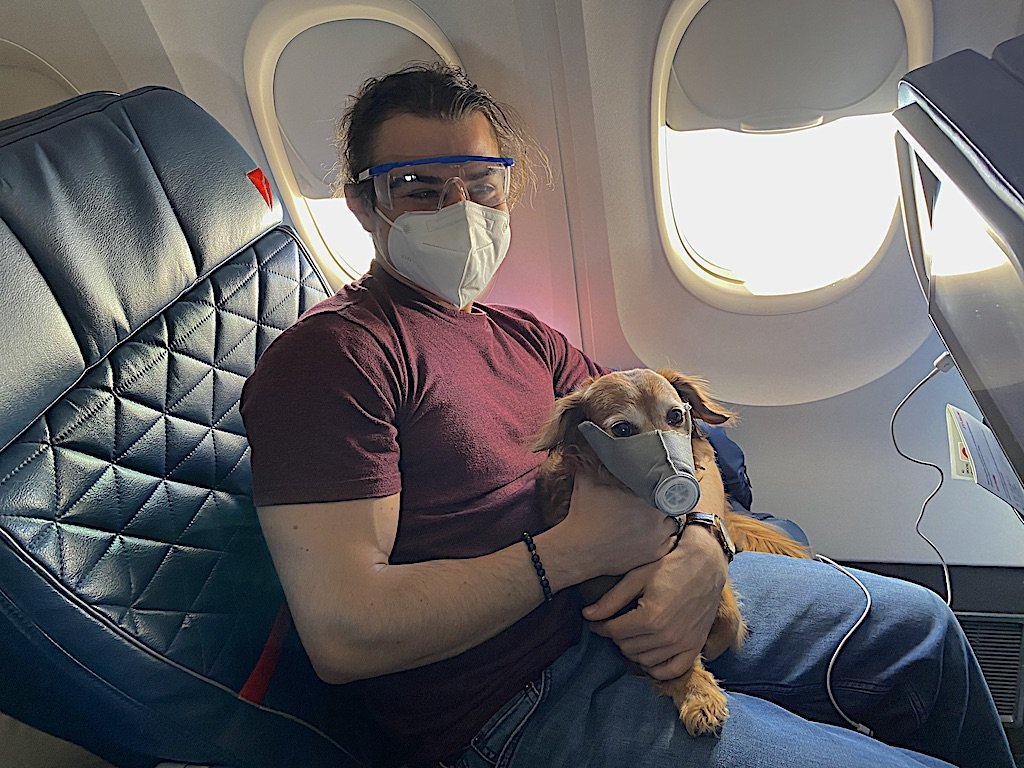 Dog's don't really need a mask when flying Delta during Covid-19