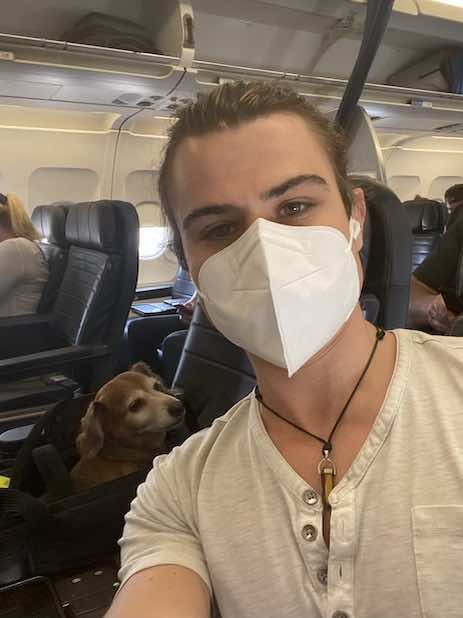 United flight onboard with dog